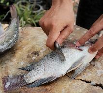 Jak oczyścić rybę z łusek bez noża w 1 minutę? Prosto, szybko, łatwo, bez bałaganu