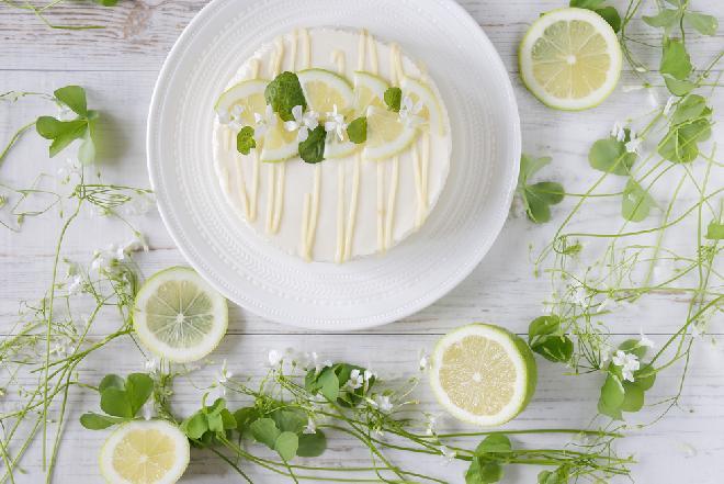 Obłędny sernik Maragarita o smaku limonki i tequili: pyszny deser tylko dla dorosłych
